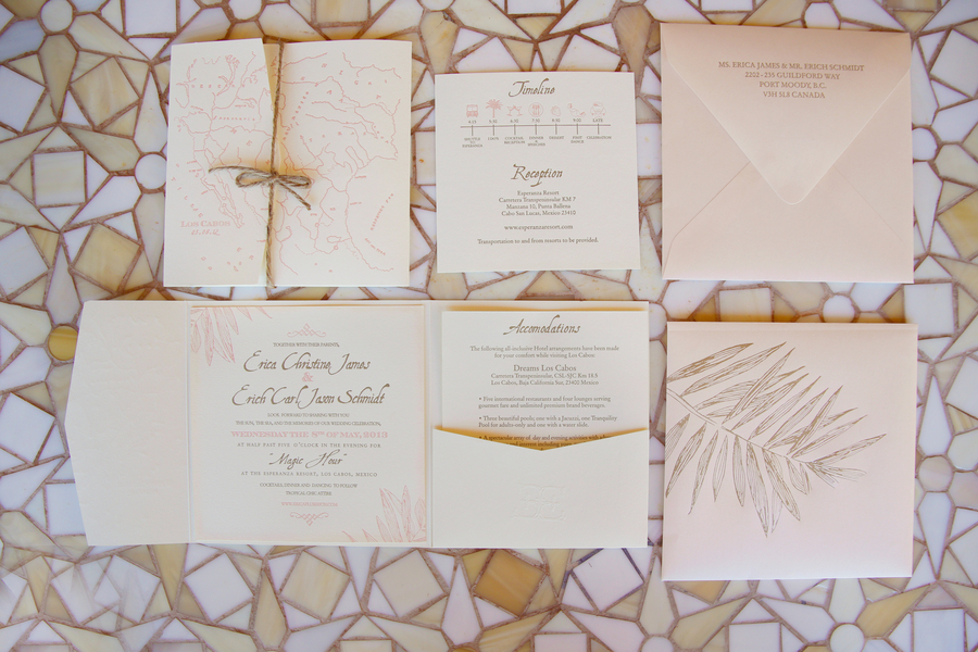 Elegant Destination Wedding in Cabo 5