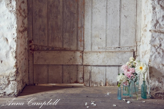 Forever Entwined by Anna Campbell Design 16