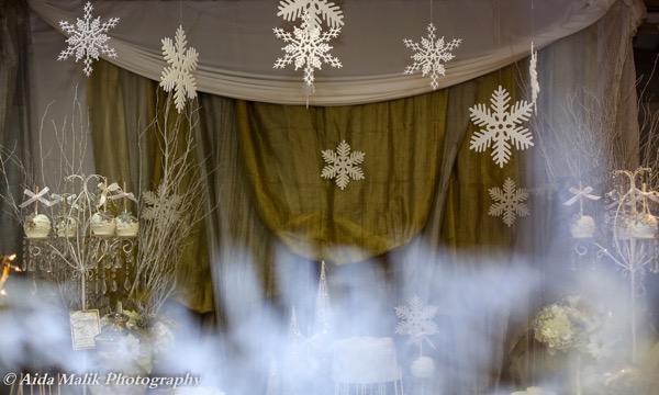 Winter Wonderland Party 11