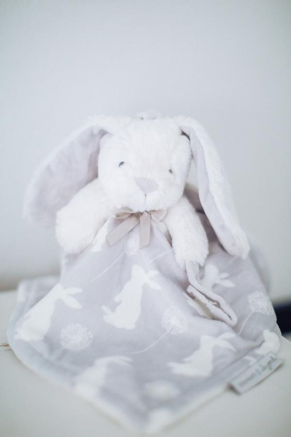 __Hunter_Ryan_Photo_greywhitevintagemodernbunnynursery7390_low