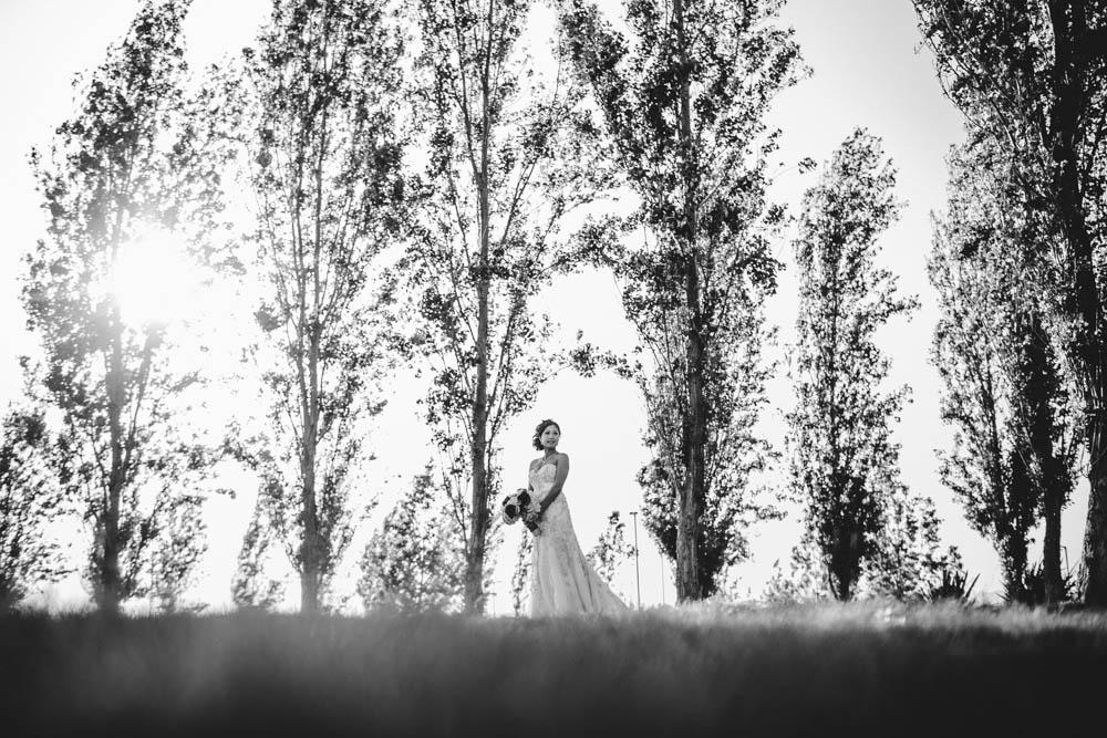 Conrad Lim Photography (12)