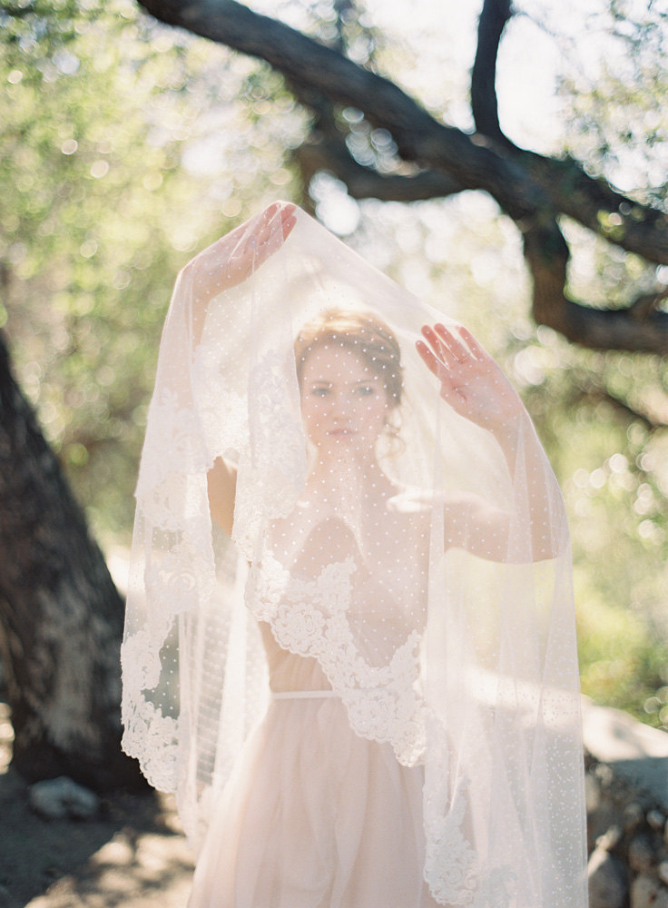 Dotted Veil