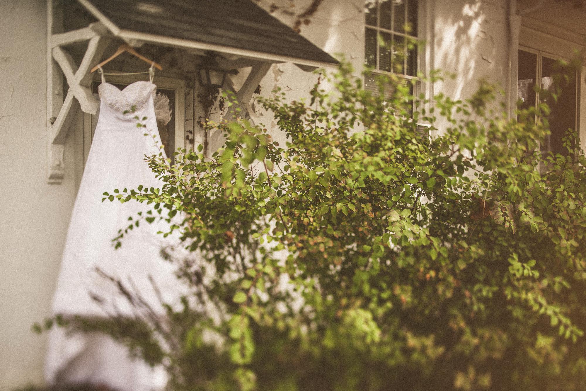 Backyard Wedding-17