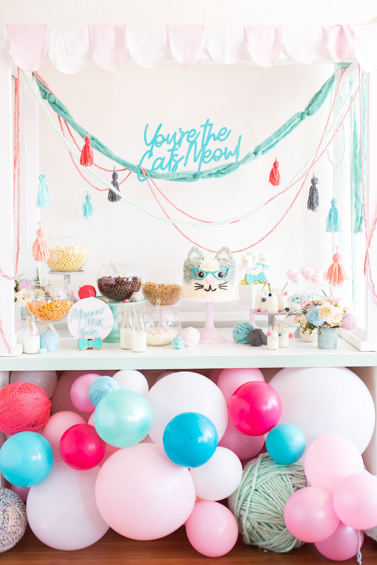 And Of Course No Cat Urday Is Complete Without A Dance Party Under The Balloons Photos By Eileen Lu