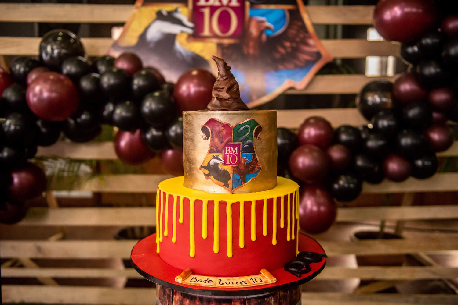 Harry Potter Themed Birthday Party In Lagos Perfete
