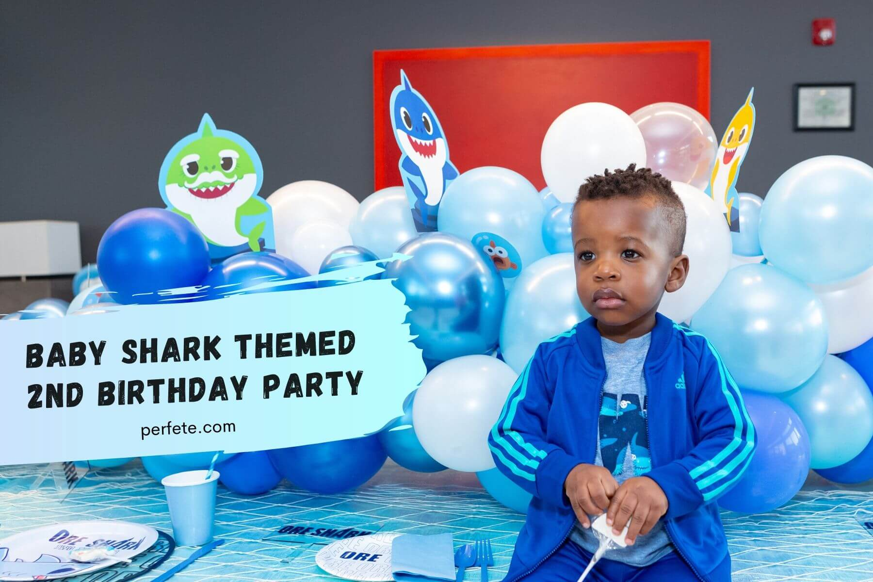 Baby Shark themed 2nd birthday party